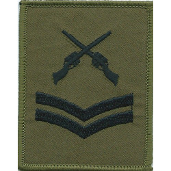 Warrant Officer Class 1 - Australian Army On Jungle Green Woven Warrant Officer rank badge