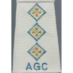 AGC - Captain (Adjutant General's Corps) - Sky Blue Beige Shirt Slide  Embroidered Officer rank badge