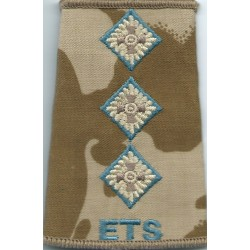 Parachute Regiment Colonel - Sky Blue On DPM Camo Rank Slide with Queen Elizabeth's Crown. Embroidered Officer rank badge