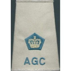 AGC ETS Lieutenant Colonel (Adjutant General's Corps Beige Shirt Slide Queen's Crown. Embroidered Officer rank badge