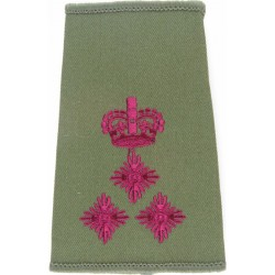 Queen's (Queen's Regiment)   Anodised Army Staybrite shoulder title