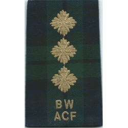 Leek / WG (Welsh Guards) Anodised Army Staybrite shoulder title