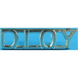 DLOY (Duke Of Lancaster's Own Yeomanry)   Anodised Army Staybrite shoulder title