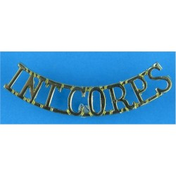 Int Corps (Intelligence Corps) Rare  Anodised Army Staybrite shoulder title