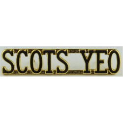 Scots Yeo (Scottish Yeomanry) 1992-1999  Gilt Army metal shoulder title
