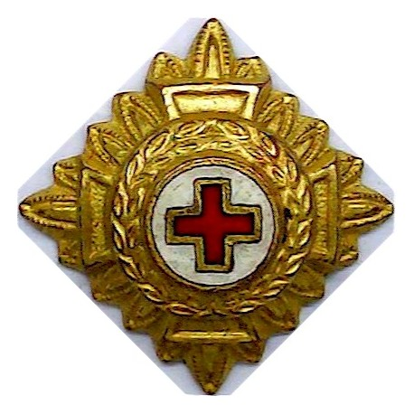 28 (Ambulance) Squadron Group Gurkha Transport Regt Embroidered Regimental cloth arm badge