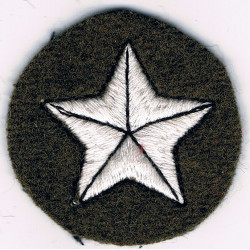 5-Pointed Star On Circle (Tank Driver/Mechanic) White/Black On Khaki  Embroidered Army cloth trade badge