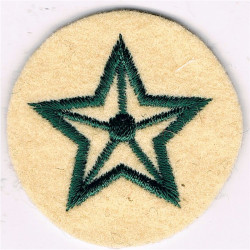 5-Pointed Star (Driver - Light Infantry) - Outline Green On Maize Small  Embroidered Army cloth trade badge