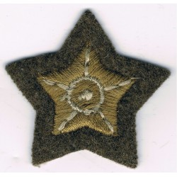 5-Pointed Star (Driver - Guards) Large Khaki  Embroidered Army cloth trade badge