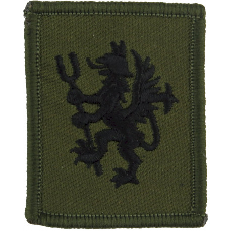RAuxAF Regiment - 2620 (County Of Norfolk) Squadron Griffin With Hayfork  Embroidered Air Force Badge