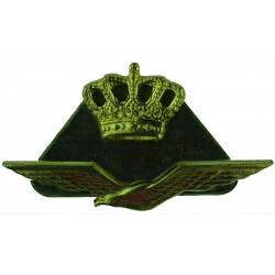 Royal Netherlands Air Force Officers Side-Hat Badge   Gilt Foreign Air Force insignia
