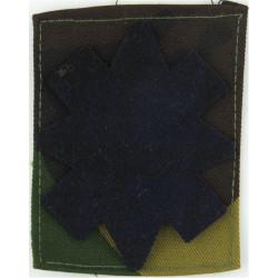 Black Watch (Royal Highland Regiment) Tartan Star On DPM Camouflage  Sewn Regimental cloth arm badge