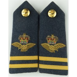 RAF Physical Training Instructor: Crown/Eagle/Swords Mess Kit with Queen Elizabeth's Crown. Bullion wire-embroidered Air Force B