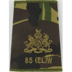 85 Expeditionary Logistics Wing Warrant Officer Rank Brown On DPM Camo with Queen Elizabeth's Crown. Embroidered Air Force Rank