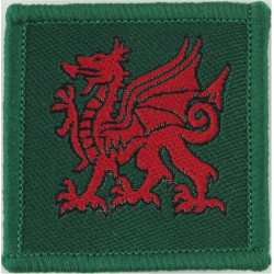 Tyne Tees Regiment (Red TT On Black) Also Durham ACF  Woven Regimental cloth arm badge