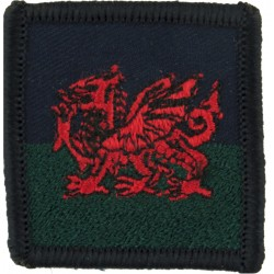Joint NBC Regiment Joint Assessment Team JAT NATO Black+ Blue On Olive Embroidered Regimental cloth arm badge