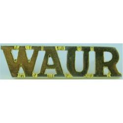 WAUR (Western Australia University Regiment)   Gilt Army metal shoulder title
