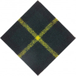 Cape Town Highlanders (South Africa) Gordon Diamond  Tartan Badge Backing