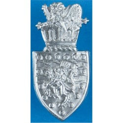 Devon & Cornwall Police Collar Badge  Chrome-plated UK Police or Prison insignia