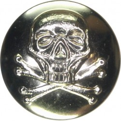 17th/21st Lancers (also Queen's Royal Lancers) 19mm - Gold Colour  Anodised Staybrite military uniform button