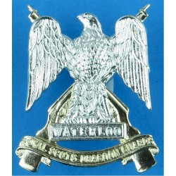 Royal Scots Dragoon Guards FL - Eagle  Anodised Staybrite collar badge