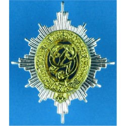 Band Of The Dragoon Guards   Silver-plate and gilt Other Ranks' collar badge
