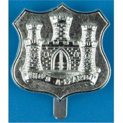Dorset Territorials Who's A-Fear'd?  Anodised Staybrite army cap badge