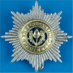 Cheshire Regiment   Anodised Staybrite army cap badge