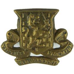 Royal Irish Regiment FR -  Pre-1922  Brass Other Ranks' collar badge