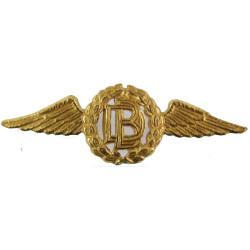 RAF Dental Branch Collar Badge  Brass Air Force Branch Badge
