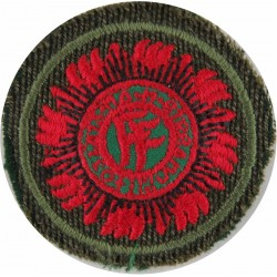 Battalion Sergeant Major (WO1 Equivalent) Irish Defence Forces  Embroidered Warrant Officer rank badge