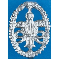 Cheshire Constabulary Collar Badge  Chrome-plated UK Police or Prison insignia