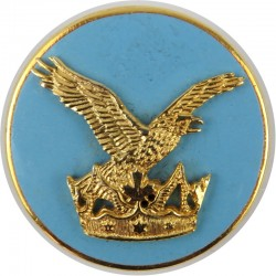 Canadian Forces Air Command Breast Badge / Fob  Enamel