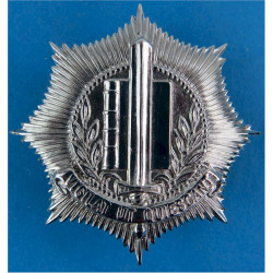 Netherlands Municipal Police - Gemeentepolitie Cap Badge - Pre-1993  Chrome-plated Overseas Police, Prison or Corrections insign