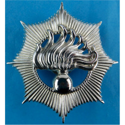 Netherlands National Police - Rijkspolitie Cap Badge - Pre-1993  Chrome-plated Overseas Police, Prison or Corrections insignia
