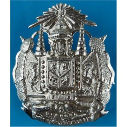 Thailand Police Cap Badge   Chrome-plated Overseas Police, Prison or Corrections insignia