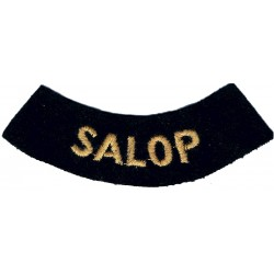 Salop (Curved Chest Title) Yellow On Dark Blue  Embroidered Civil Defence