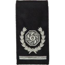 Rank Slide: Senior Divisional Officer / Area Manager Bar/ Impeller+Wreath  Lurex Fire and Rescue Service insignia