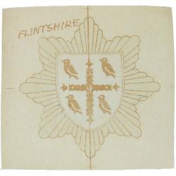 Flint Fire Brigade Transfer Helmet Badge  Paper Fire and Rescue Service insignia