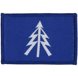 1st The Queen's Dragoon Guards (Spear + Lightning) White On Blue  Woven Regimental cloth arm badge