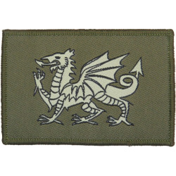 1st The Queen's Dragoon Guards (Dragon - Subdued) FL - On Velcro  Woven Regimental cloth arm badge