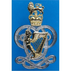 Queen's Royal Hussars (Queen's Own And Royal Irish) 54mm High with Queen Elizabeth's Crown. Silver-plate and gilt Regimental met