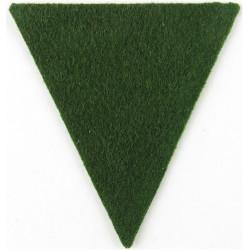 Royal Irish Fusiliers Green Triangle  Felt Badge Backing