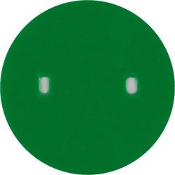 Royal Air Force Apprentice - Green Disc 57mm Diameter  Plastic Badge Backing