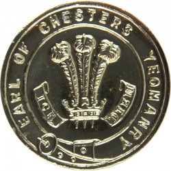 47 (Middlesex Yeomanry) Signal Squadron (V) 19.5mm - Gold Colour Queen's Crown. Anodised Staybrite military uniform button