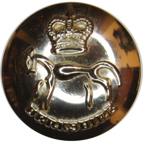 Small Arms School Corps 25.5mm Silver Colour with Queen Elizabeth's Crown. Anodised Staybrite military uniform button