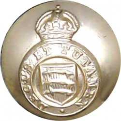 Royal Irish Rangers (Pipers) 19.5mm Silver Colour with Queen Elizabeth's Crown. Anodised Staybrite military uniform button