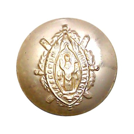16th/5th The Queen's Royal Lancers 23mm - Gold Colour with King's Crown. Anodised Staybrite military uniform button