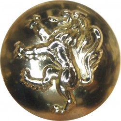 Duke Of Wellington's Regiment (West Riding) 25.5mm - Gold Colour  Anodised Staybrite military uniform button
