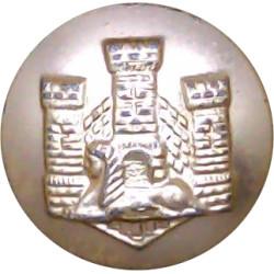 Devonshire & Dorset Regiment 19mm - Gold Colour  Anodised Staybrite military uniform button